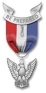 20081111192326_Eagle medal